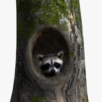 3dsmax raccoon stump