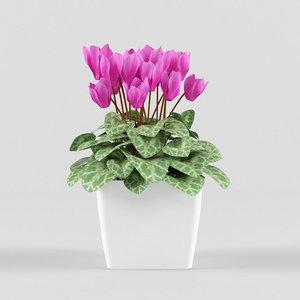3d model of flower pot