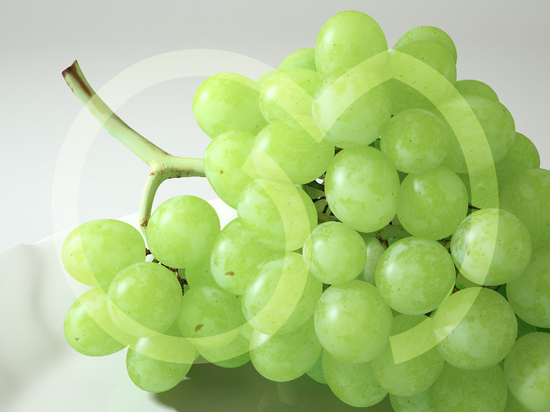3d photorealistic white grape
