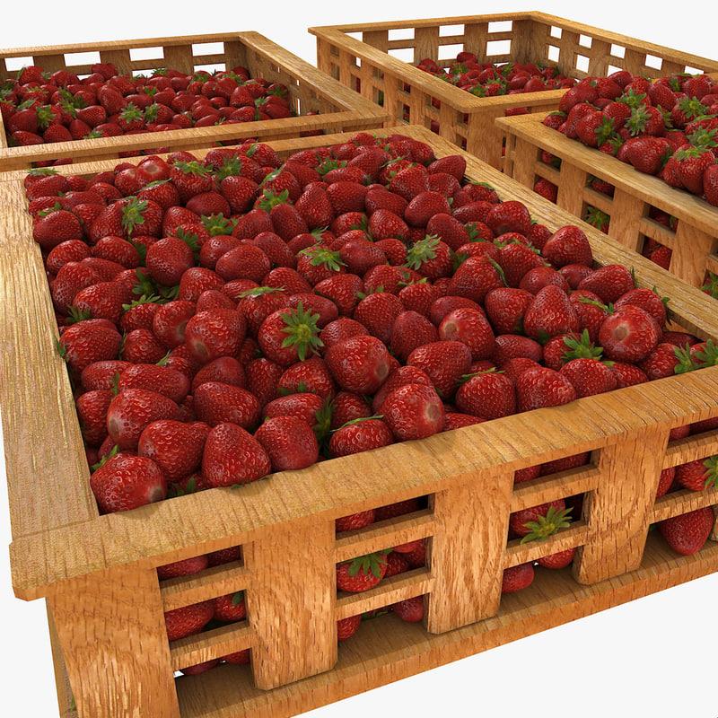 3d plant plantation market model
