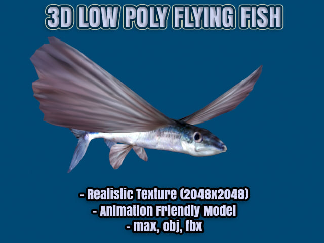 3d model flying fish realistic