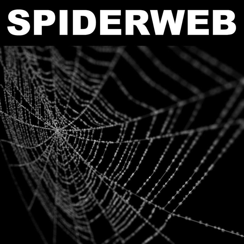 spiderweb web 3d model