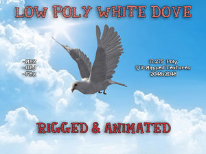 3d white dove rigged animation
