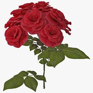 max rose bush