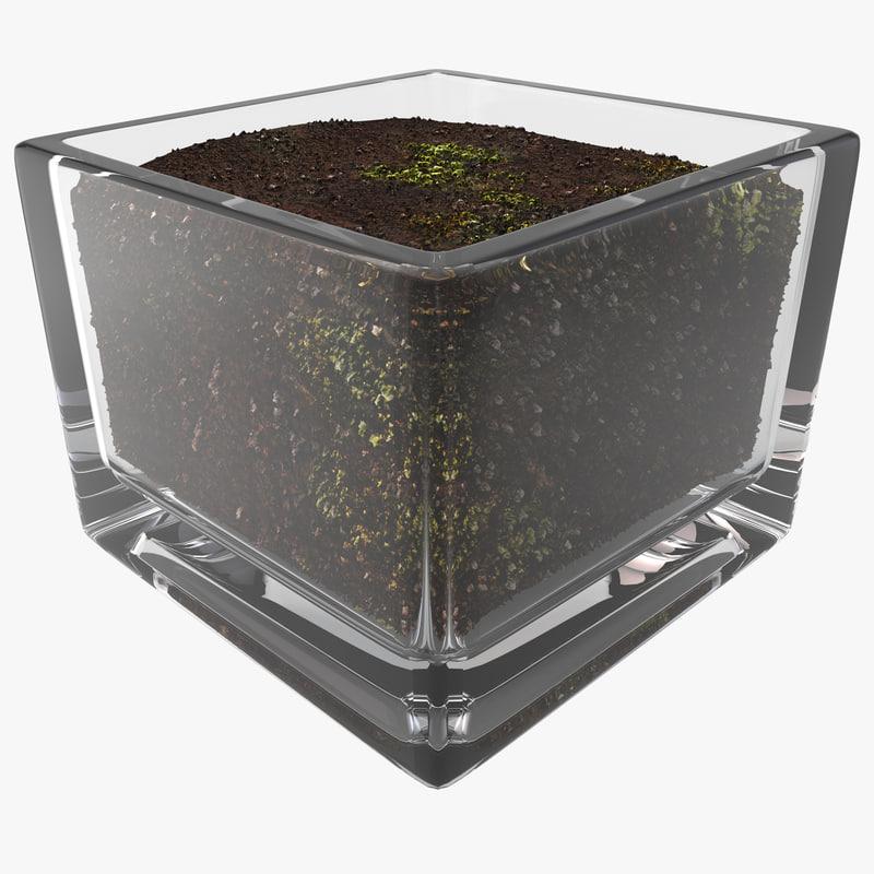 Square Glass Vase Soil 3d Max