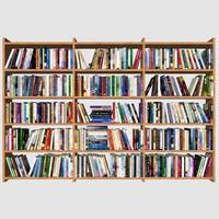 book mc-01 3d max