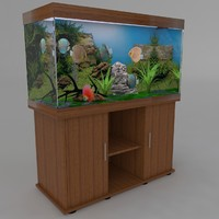fishtank with discus
