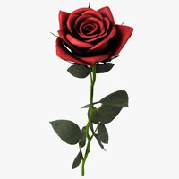 maya red rose