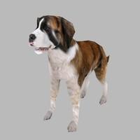 3d model dog