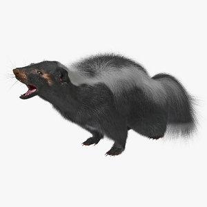 max skunk pose 3 fur