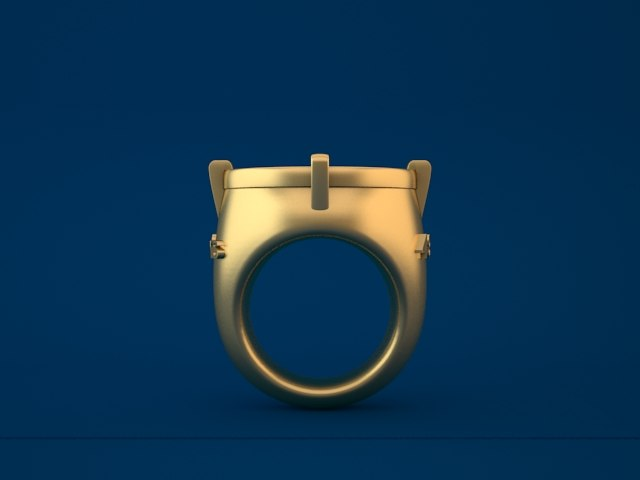 3d san francisco ring