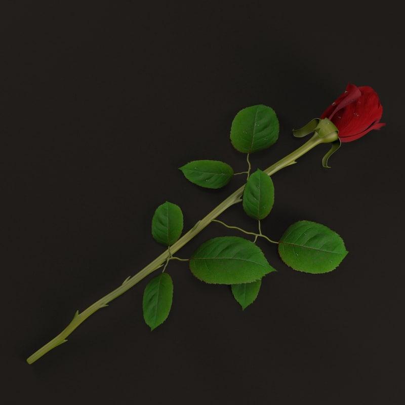 3ds max rose