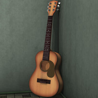 Acoustic Guitar Oak