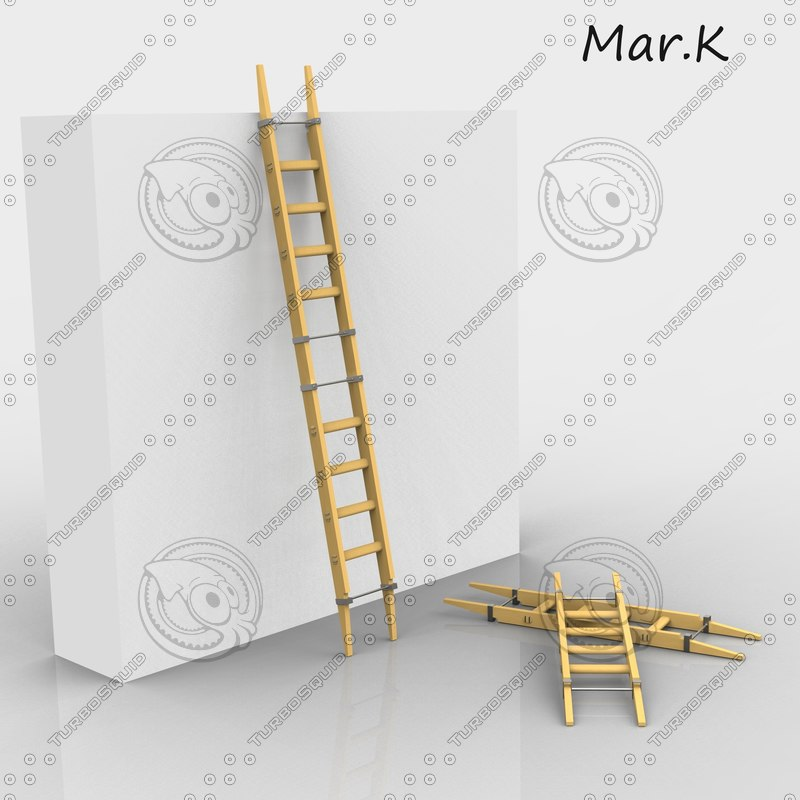3ds adjustable ladder