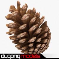 3d fir cone model