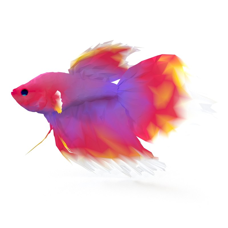 gold fish 3d max