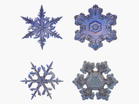 snow snowflake flakes 3d model