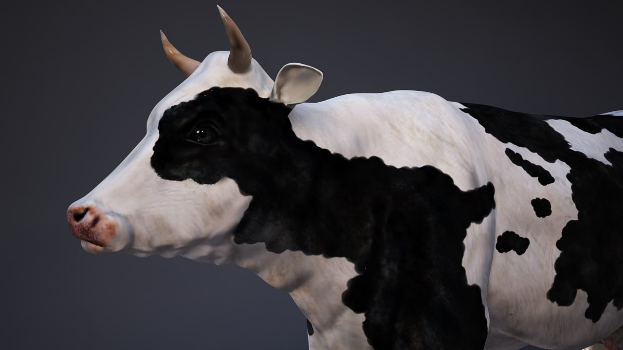 3d max cow animation