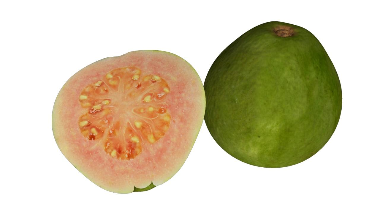 3d guavas tropical model