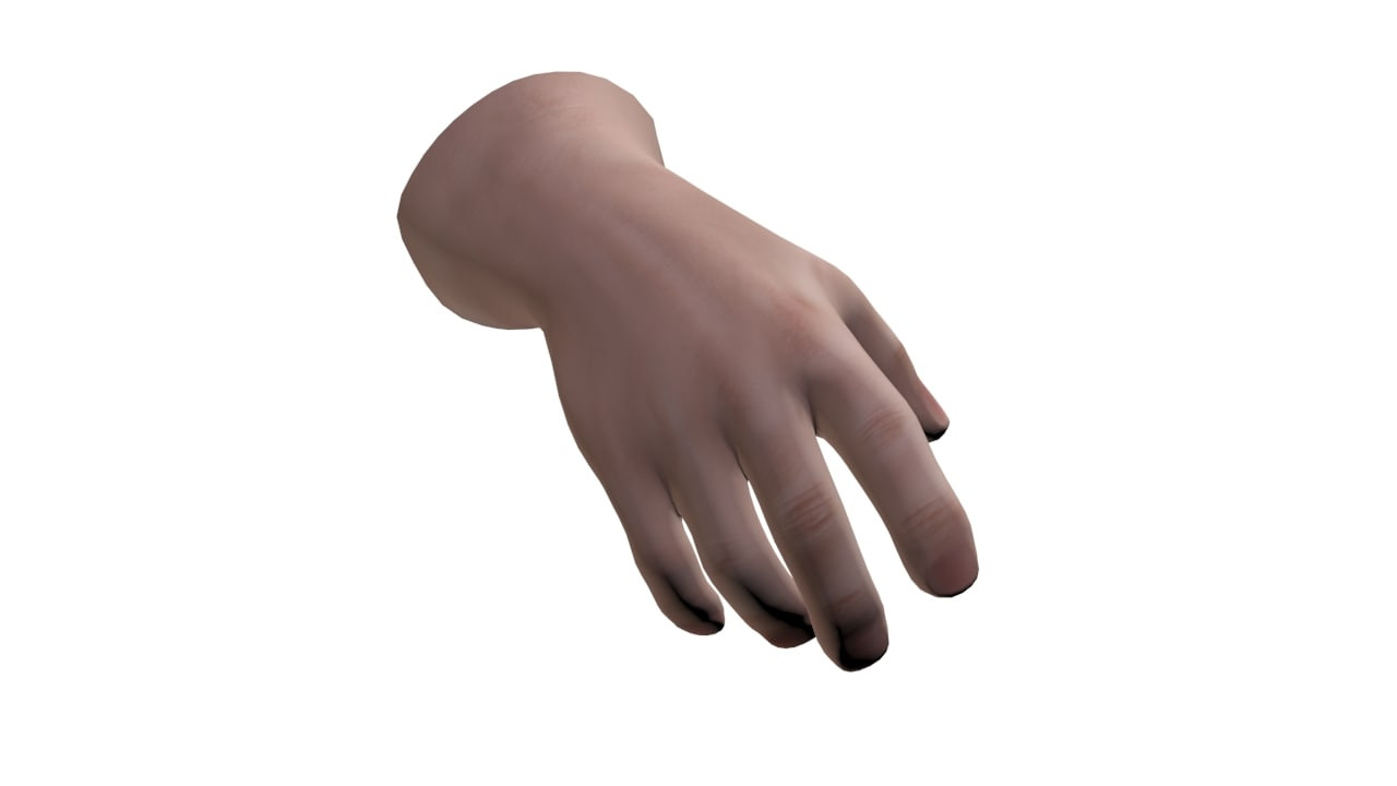 3d hand rigged model