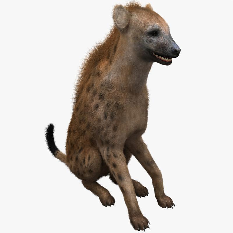 3d hyena pose 3 fur model