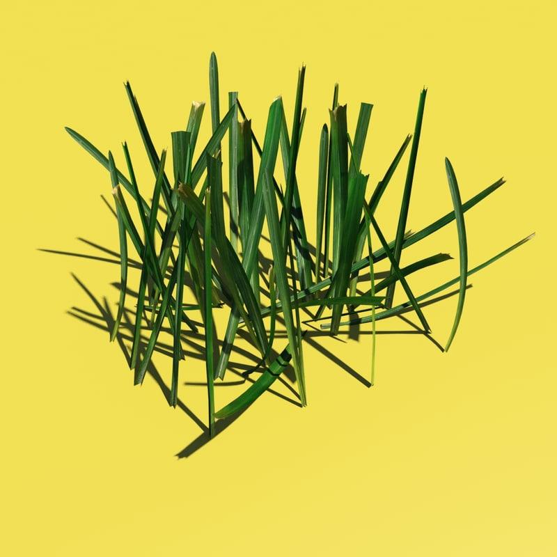 photorealistic grass 3d model