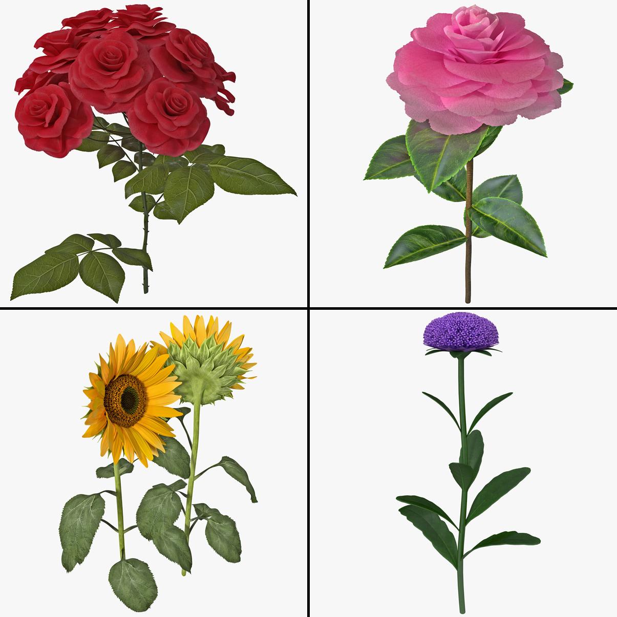 3dsmax flower collecton 4