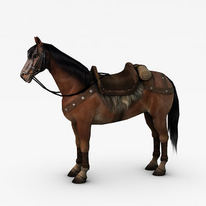 horse games max