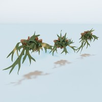 3ds living wall plant -