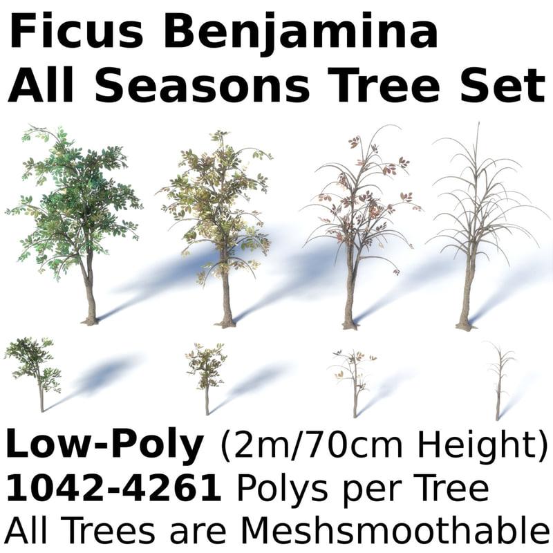3d model tree seasons summer