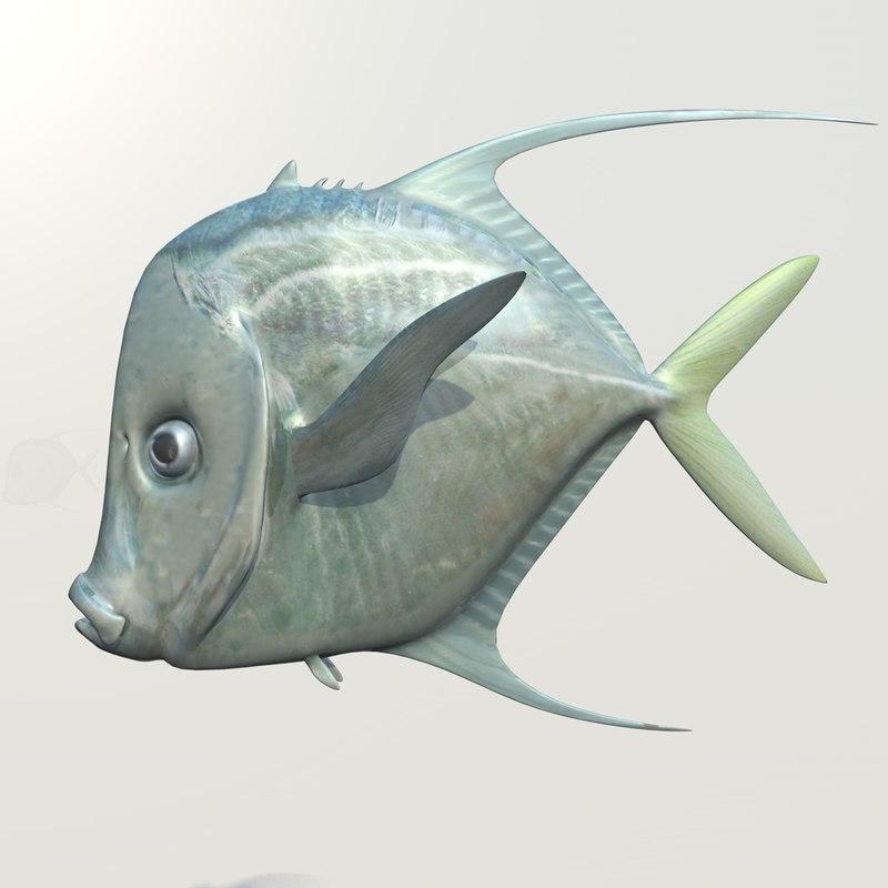 3d lookdown fish model