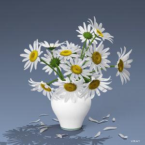 3d model bouquet daisies