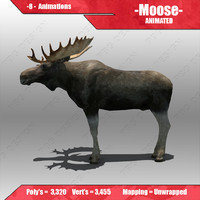 Moose Animated