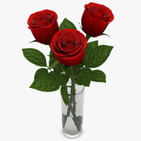 Rose Red in Vase