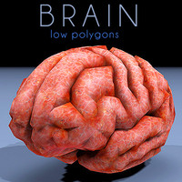 brain low poly