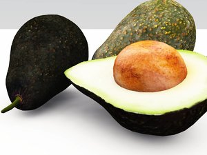 3d avocado vue