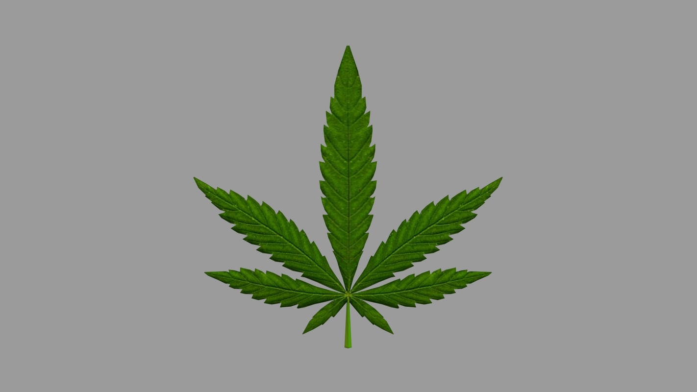 3d cannabis leaf model