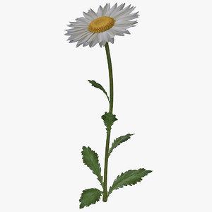 daisy 3d max