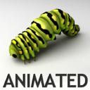 Larvae 3D models