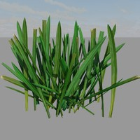 3ds max photorealistic grass