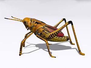 grasshopper hopper 3ds