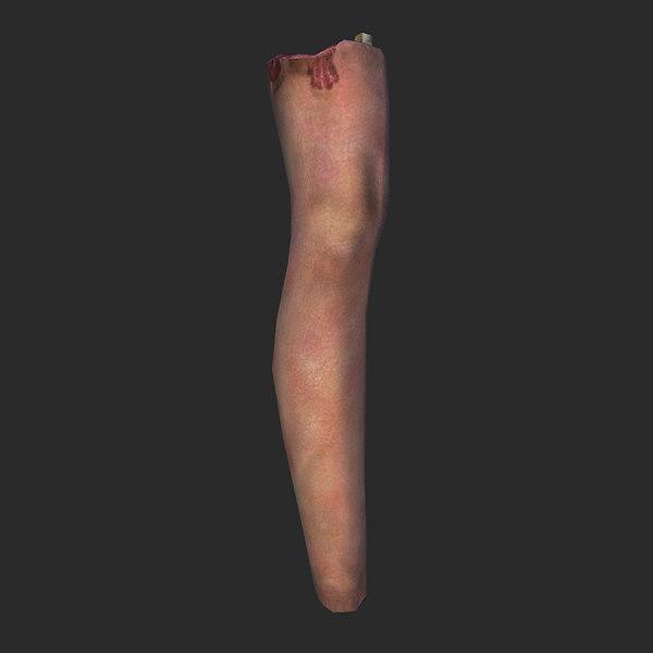 3d mutilated human leg