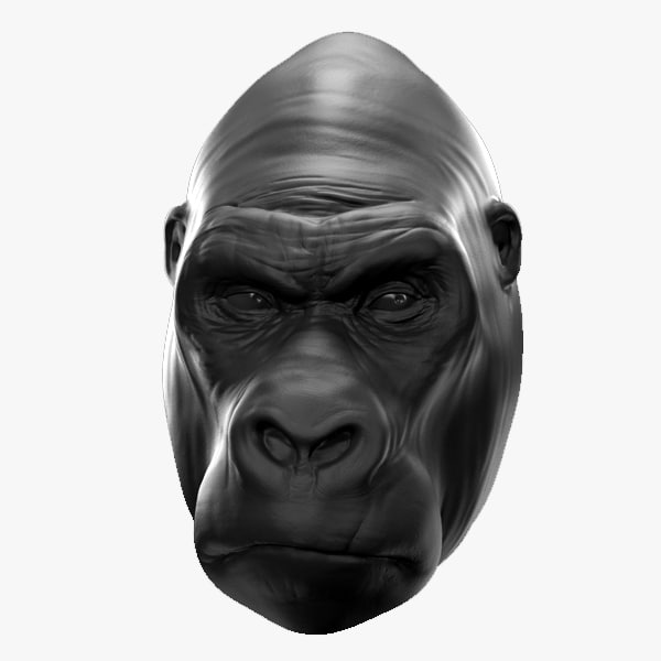 maya gorilla face zbrush
