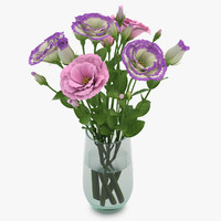 eustoma colorful 3d model