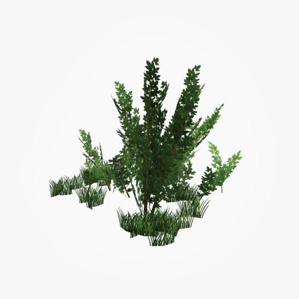 bush games max