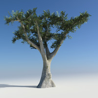 olive tree obj