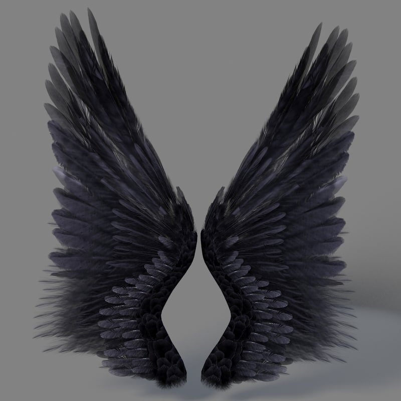 realistic wings 3d model