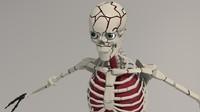 Skeleton Character 3D
