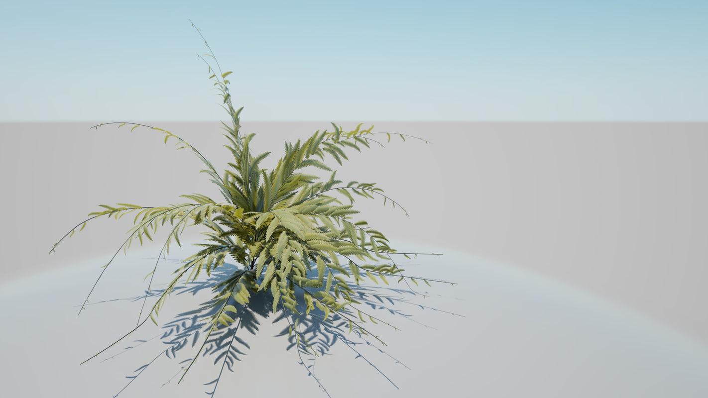 african shrub 3d model