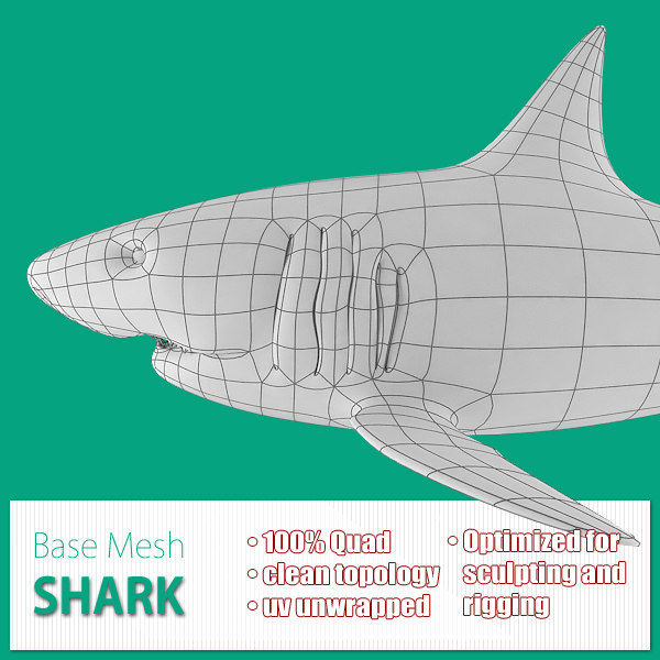 x base mesh shark